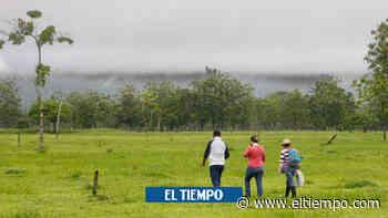Equipo de restitución de tierras completa 14 días desaparecido en Meta - El Tiempo