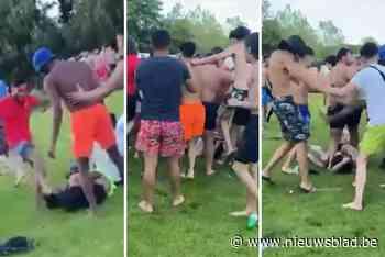 Zo hevig ging het eraan toe in de Blaarmeersen: beelden van vechtpartij circuleren op sociale media
