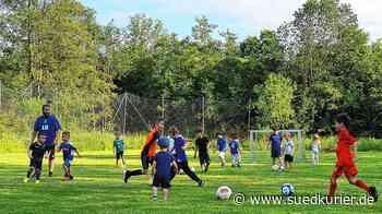 Wehr: Endlich wieder Fußball! Die jüngsten Kicker der Spielvereinigung trainieren wieder - SÜDKURIER Online