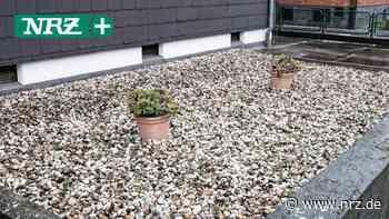 Steingärten: Voerde setzt auf Aufklärung statt Vorgaben - NRZ