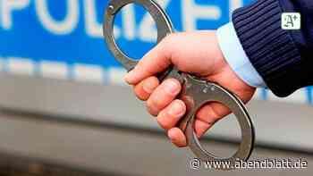 Polizei nimmt Drogendealer in Reinbek vorläufig fest - Hamburger Abendblatt