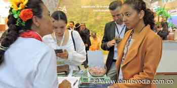 [La Cámara de Comercio de Ibagué abre convocatoria para misión comercial a Anato 2021] - El Nuevo Dia (Colombia)