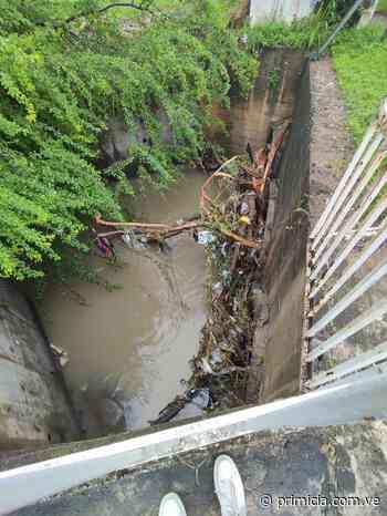 Vecinos de Los Olivos piden limpieza de canales pluviales ante llegada de las lluvias - Diario Primicia - primicia.com.ve