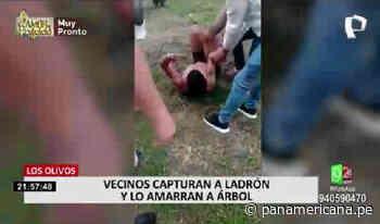 Los Olivos: vecinos de urbanización Los Ángeles denuncian constantes robos | Panamericana TV - Panamericana Televisión