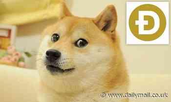 'Doge' meme breaks NFT record after it sells for $4 million