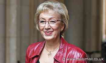 Ex-Tory minister Andrea Leadsom among Brexiteers receiving honours from the Queen