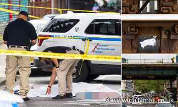 Man, 39, is shot dead in Brooklyn street - as NYC deals with 68 percent increase in shootings