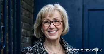Andrea Leadsom gets damehood as Boris Johnson rewards loyal Tories with honours