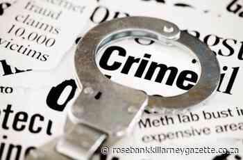 Trio crimes increase in Bramley and Sandringham - Rosebank Killarney Gazette