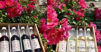 La Fiera del vino di Buttrio lancia le degustazioni a distanza - Il Friuli