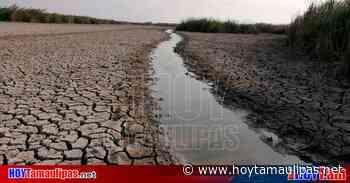Preparan desazolve de la Laguna del Champayán en Altamira - Hoy Tamaulipas