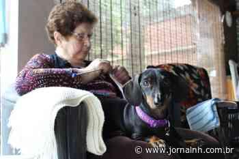 Em Ivoti, a solidariedade está em cada ponto de tricô e crochê - Jornal NH