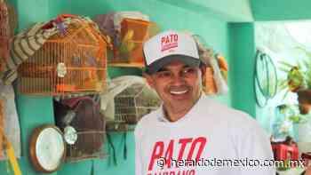 ¿Cómo le fue al Pato Zambrano en las elecciones 2021? - El Heraldo de México
