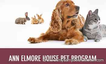 Ann Elmore Transition House expands, will now welcome pets - My Campbell River Now