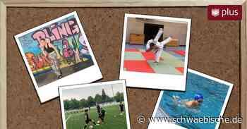 Endlich wieder auf den Sportplatz und in die Turnhalle: Wie der Sport in Lindau startet - Schwäbische
