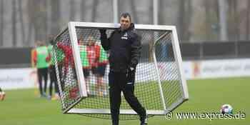 1. FC Köln: Andi Menger wechselt zu Hertha BSC - EXPRESS