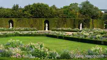 Château de Versailles : renaissance du bosquet de la Reine - Les Échos