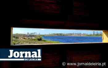 Ofereça um pouco do seu tempo e ajude a regar as árvores da Lagoa da Ervedeira - Jornal de Leiria