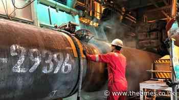 Don't cut off Ukraine's gas, Vladimir Putin warned - The Times
