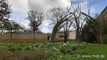 Buga-Außenstandort Apolda präsentiert seine Parks - MDR
