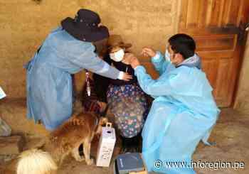 Llata: Prosigue vacunación anticovid en adultos mayores de 65 años - INFOREGION