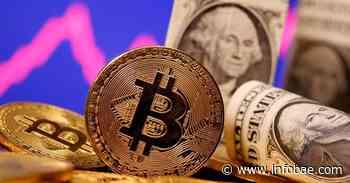 El Banco Central vuelve a la carga contra las criptomonedas: investigará a nueve fintech para detectar operaciones no autorizadas - infobae
