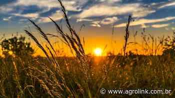 Startup de integração para o agro inaugura sede em Minas Gerais - Agrolink