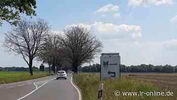 Lausitz Lauchhammer Naturschutz: Warum die Bäume an der B 169 bei Lauchhammer kahl sind - Lausitzer Rundschau