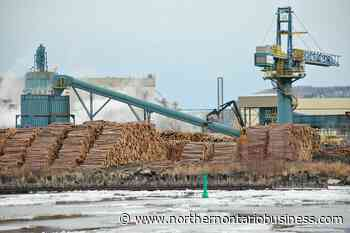 Resolute Forest Products investing $13M in Thunder Bay sawmill - Northern Ontario Business