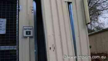 Albury Cat Burglar Still At Large - Triple M