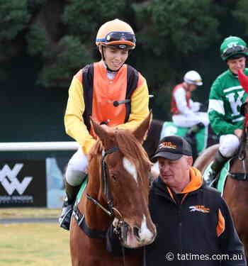 Weir runner 'should win' at Albury - Tumut and Adelong Times