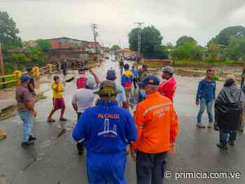 Trabajan en reparación de puente Los Aceiticos en Ciudad Bolívar - Diario Primicia - primicia.com.ve