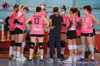 Star Volley, l'avventura playoff comincia con la trasferta di Acquaviva - BisceglieViva