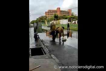Bomberos de Higuerote sofocan incendio con agua de lluvia recogida en tobos - Noticiero Digital
