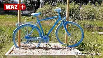 Blaue Räder am Esel in Witten nach nur einer Woche gestohlen - Westdeutsche Allgemeine Zeitung
