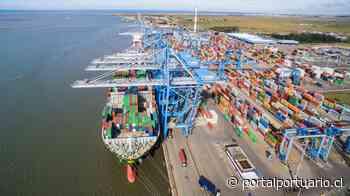 Wilson Sons realiza mayor operación de transbordo de Tecon Rio Grande - PortalPortuario