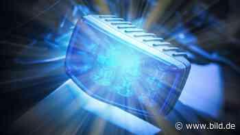 Steinheim am Albuch: Mopedfahrer stürzt wegen totem Dachs auf Straße - BILD