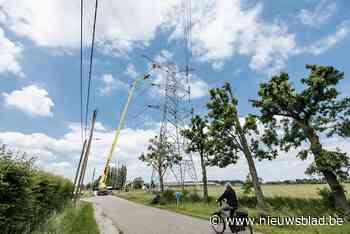 Versterking Limburgse hoogspanningslijn stap naar Europees stroomnet
