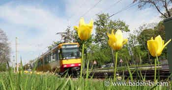 Enztalbahn zwischen Pforzheim und Bad Wildbad wegen Gleisarbeiten gesperrt - Baden TV News Online