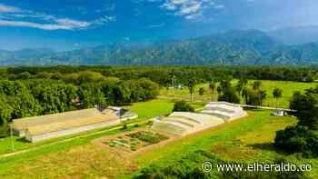 Proyecto de horticultura en Magdalena gana premio científico - EL HERALDO