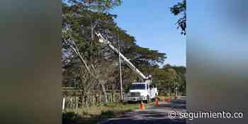 ¡Prepárese! 11 municipios del Magdalena no tendrán luz el domingo - Seguimiento.co