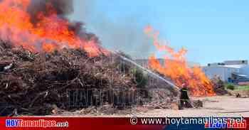 Arrasa incendio con centro de acopio en Nuevo Laredo - Hoy Tamaulipas