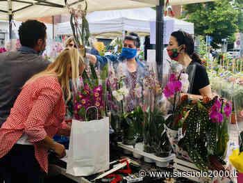 """Maranello in fiore, la piazza è """"green"""". Domenica 13 giugno la mostra mercato florovivaistica - sassuolo2000.it - SASSUOLO NOTIZIE - SASSUOLO 2000"""