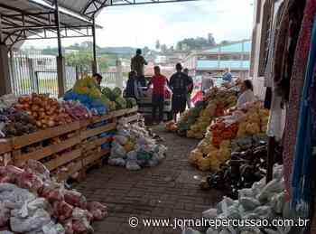 Famílias recebem doação de sacolas de alimentos em Sapiranga - Jornal Repercussão