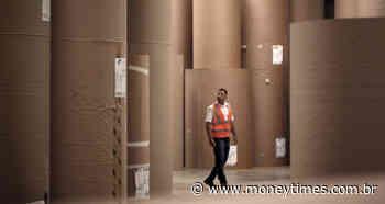 Klabin ou Suzano? Que ação ganhará mais com recuperação da demanda global? - Money Times