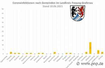 Über 50 Prozent an Erstimpfungen im Landkreis Freyung-Grafenau - Freyung - Passauer Neue Presse