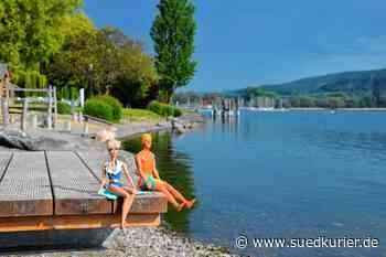 Bodman-Ludwigshafen: Warum das Badeverbot in Bodman-Ludwigshafen noch gar nicht rechtskräftig ist - SÜDKURIER Online