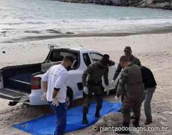 Arraial do Cabo: Tartaruga é encontrada morta na Prainha - Plantao dos Lagos