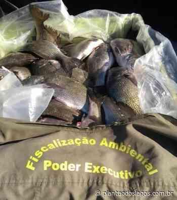 600 kg de peixes são apreendidos em Arraial do Cabo - Plantao dos Lagos