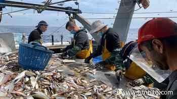Puerto Madryn: tres buques pesqueros fondeados en aislamiento por casos de Covid-19 - ámbito.com